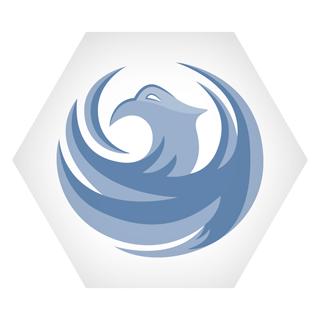 Phoenix International School logo icon